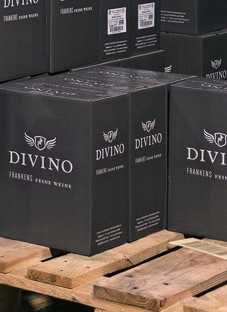 Divino-Homeservice